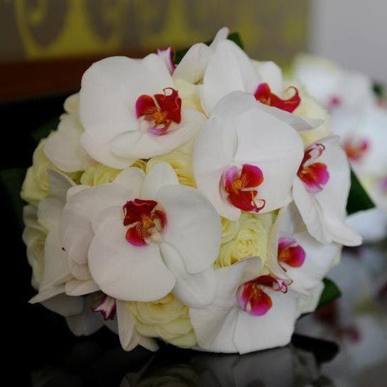 Past Weddings Arbour Blooms (57)