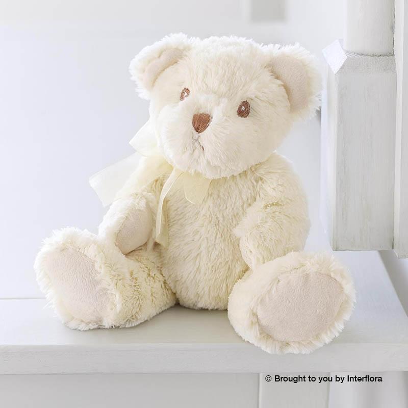 Lg Null Bailey Bear.jpg